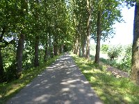 BRUXELLES Balade vélo Dendermonde