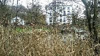 BRUXELLES A pied dans le Meerdaalbos-Zoetwater