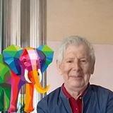 profil de Elmer