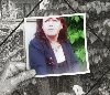 profil de Pivoine27