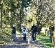 LIEGE Marche de 20 Km à Baraque de Fraiture