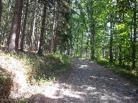 LIEGE marche de +- 6km   banneux