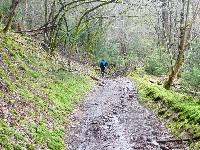 LIEGE Marche de 20 Km à Gomze et Andoumont