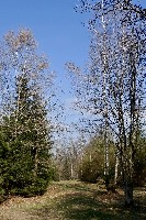 LIEGE Marche de 20 Km à Rahier plus pique-nique