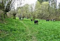 LIEGE Marche de 20 Km à  Lontzen