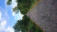 NANTES Vélo dans le marais Audubon