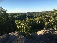 PARIS Marche randonnée forêt de Fontainebleau au départ du carrefour de la Libération environ 25-30 km