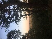 PARIS Marche de 12 km minimum de 17h15 à 20h15 chaos de rochers coucher du soleil