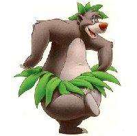 profil de baloo66000